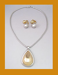 Napier Golden and Silver Tone Necklace and Earrings