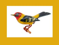 Takahashi Male Western Tanager Pin
